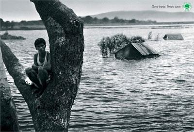 Save trees .Tree Saves