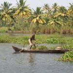 Flip Media Trivandrum trip to Kumarakom 15